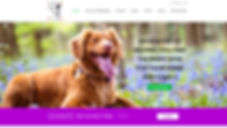 Connect a Pet New England_website.jpg