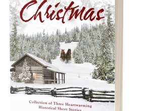 New Book Cover: A Home for Christmas