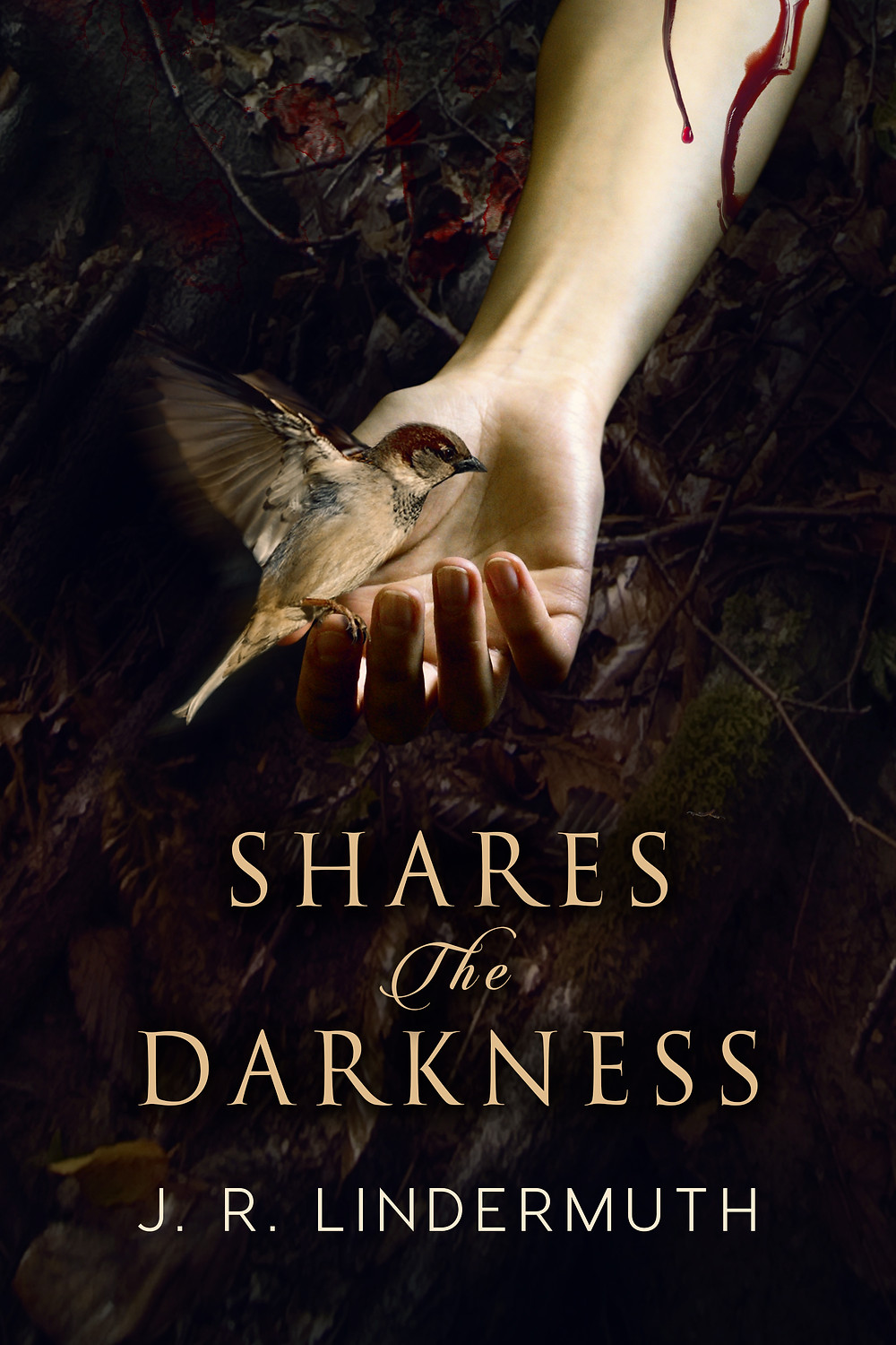 SHARES THE DARKNESS by J.R. Lindermuth