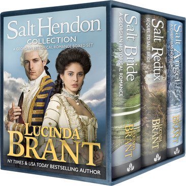 A Reader's Opinion: THE SALT HENDON COLLECTION by Lucinda Brant