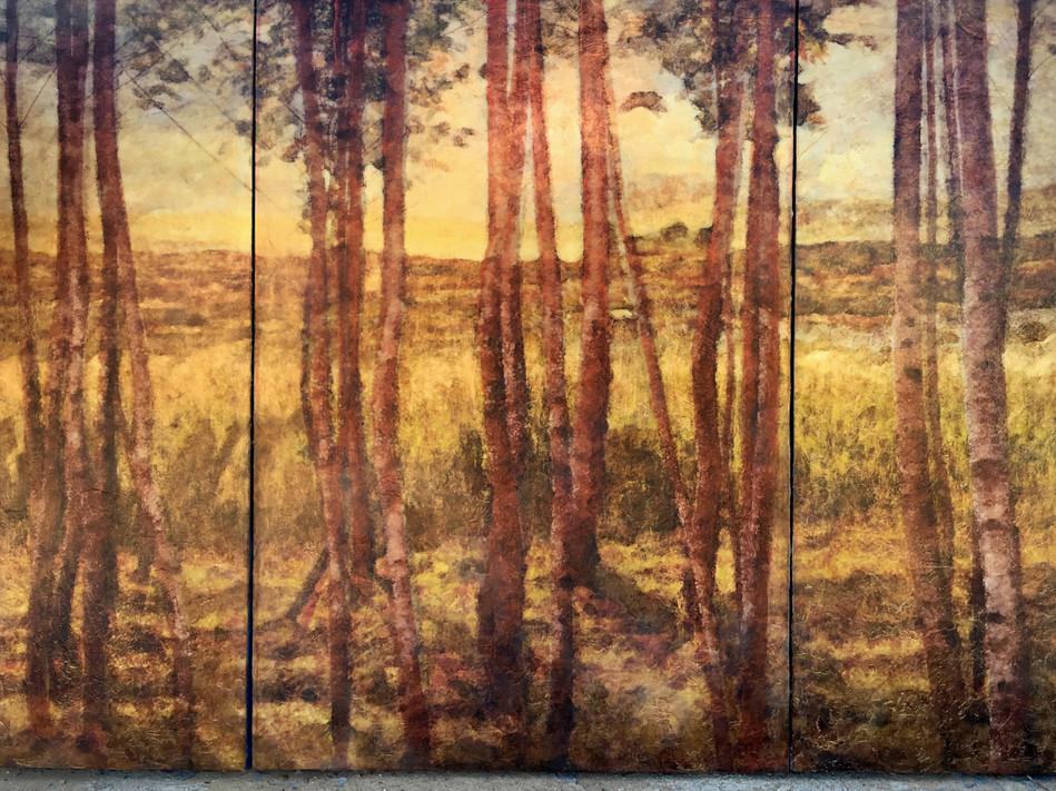 Eucalyptica (Triptych)
