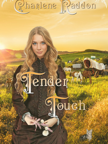 A Reader's Opinion: TENDER TOUCH by Charlene Raddon