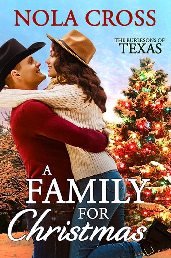A Family for Christmas by Nola Cross