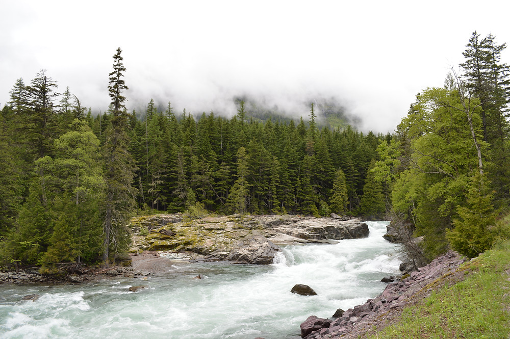 River in Glacier National Park - author MK McClintock - #mountains #bliss #river