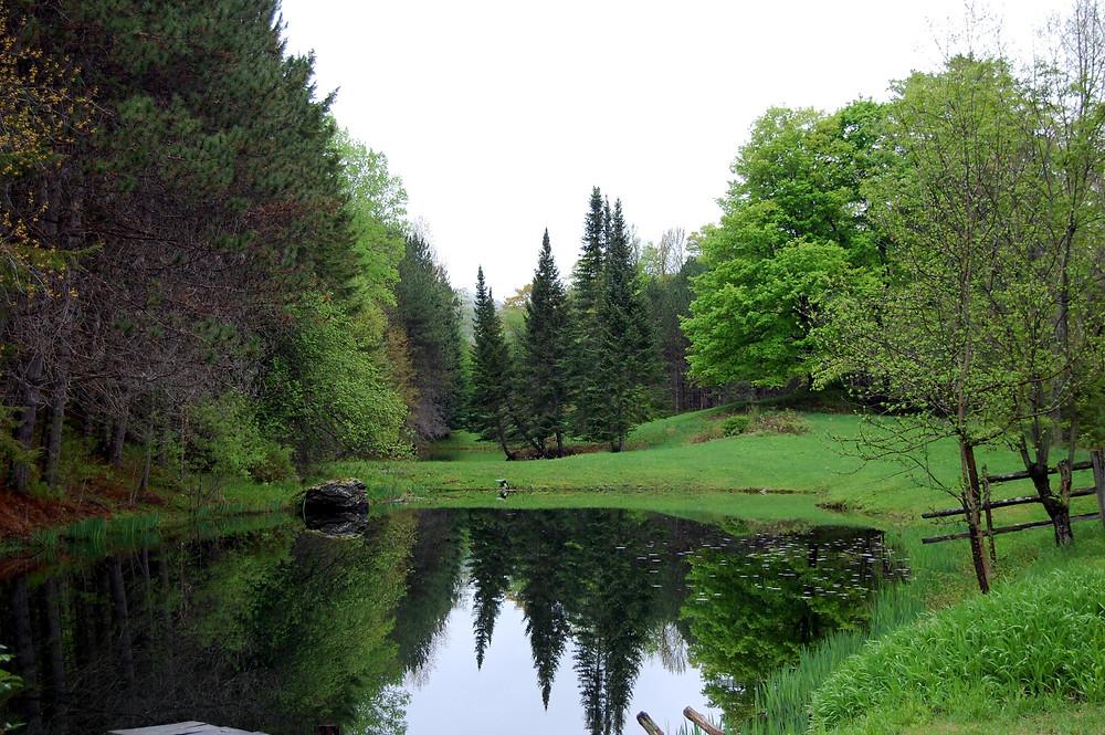 North Pomfret, Vermont_MK McClintock