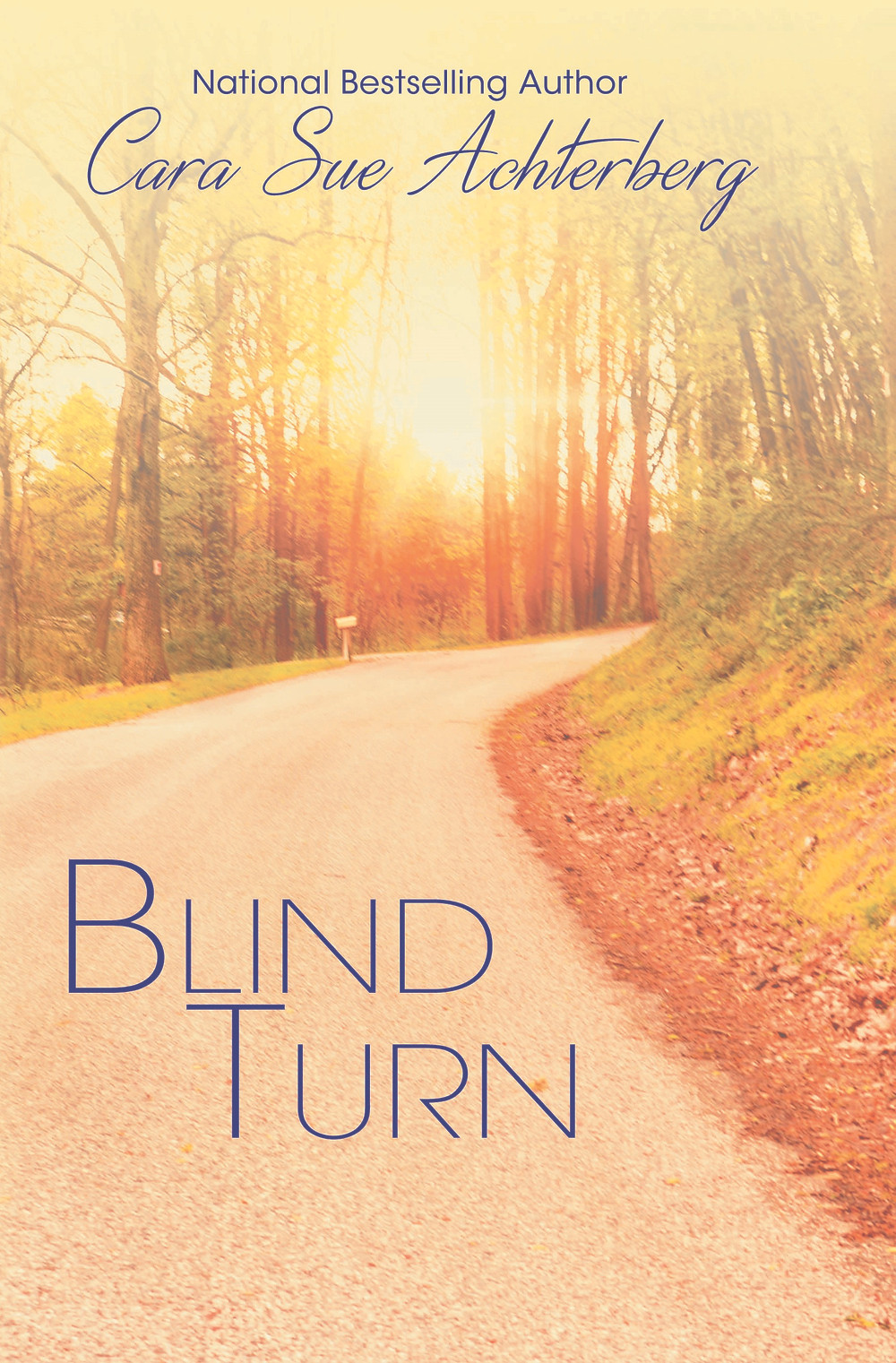 BLIND TURN by Cara Sue Achterberg