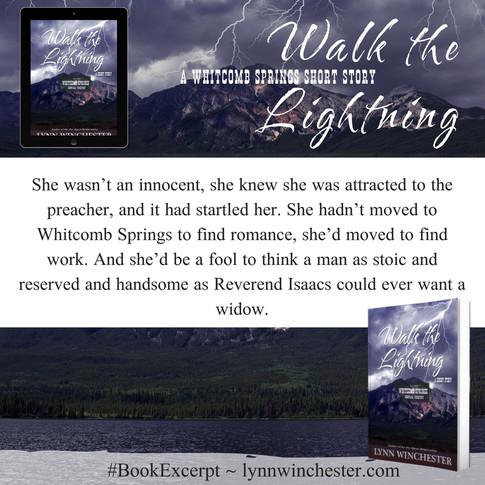 Walk the Lightning Excerpt 1.jpg