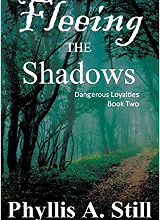 A Reader's Opinion: FLEEING THE SHADOWS by Phyllis A. Still