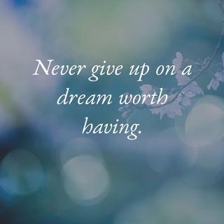 Never give up on a dream_MK McClintock.j