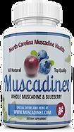 blueberry pterostilbene alzheimer's protection