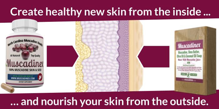 how skin ages and wrinkles