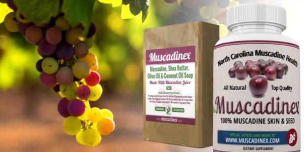 Visit the Muscadinex store