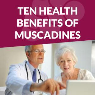 muscadine grapeseed health benefits