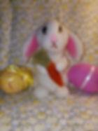 Beatrix the Bunny.JPG