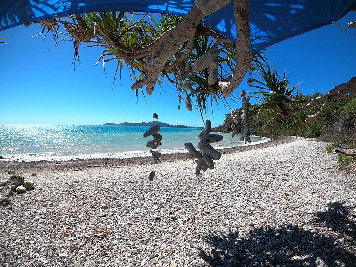 Coral Beach.jpg