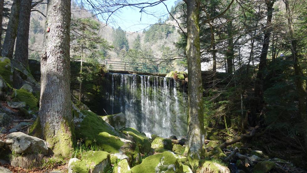 Les rivières et cascades du Massif Vosgien