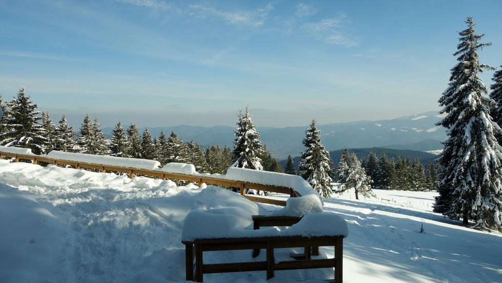 L'hiver sur le Massif Vosgien
