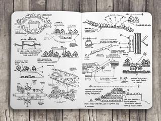 Inside the Sketchbook Part I
