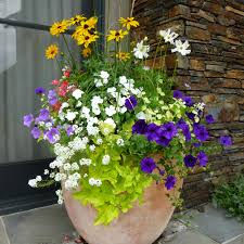 May 6 Make a Custom Flower Pot