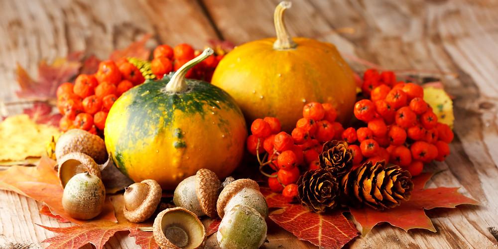 Fall Healthy Recipes