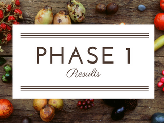 80 Day Obsession Review: Phase 1 Results