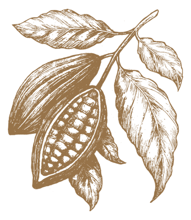 cacao pod 2.png