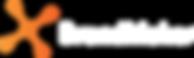 BrandMaker_Logo_dark_bg.png
