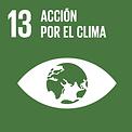 LOGO ACCION POR EL CLIMA.png