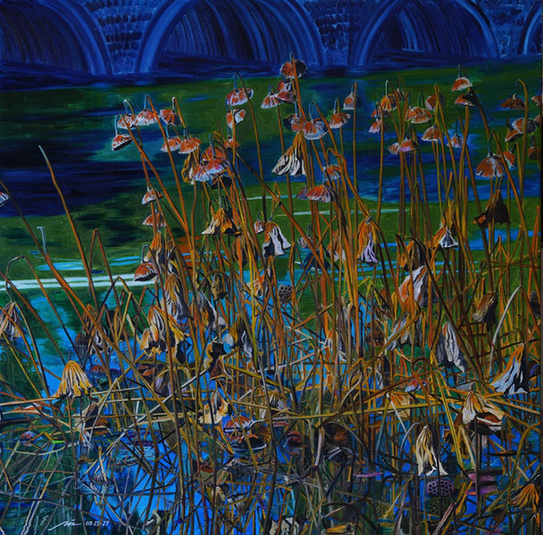Lily Pond in Winter