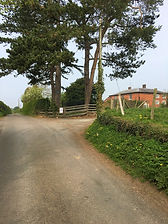 Approach to Marton House drive