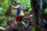 Trekking XXI.jpg