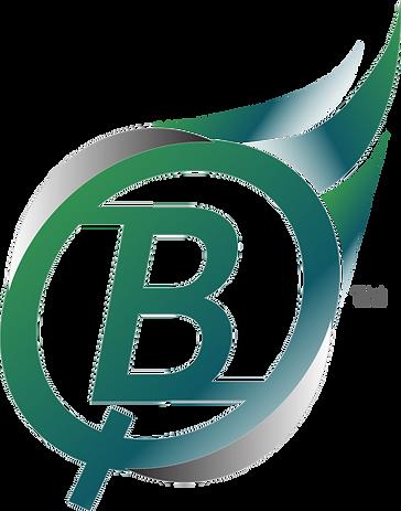 Bible Quiz_color_logo.png