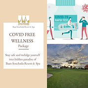 Covid Free Wellness package.png