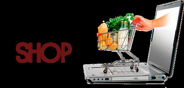 tienda-virtual-aynipress.png