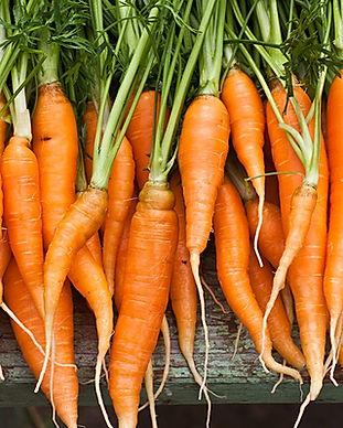 fresh-organic-carrots.jpg