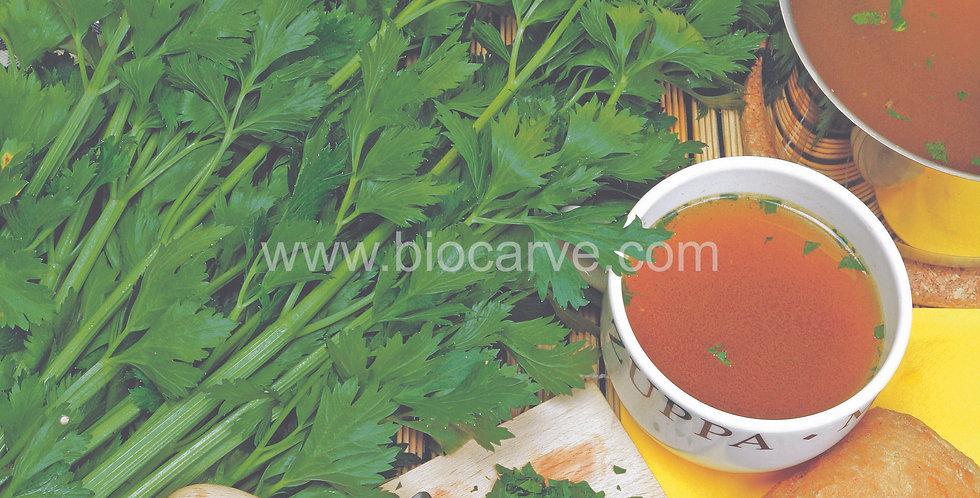 Herb Celery