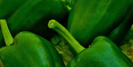 Capsicum Green