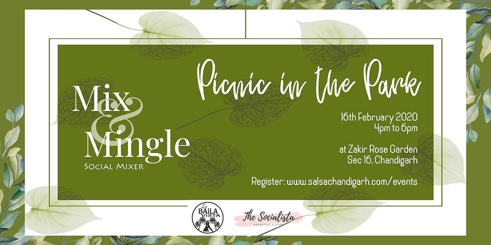 Mix & Mingle X Picnic Mixer