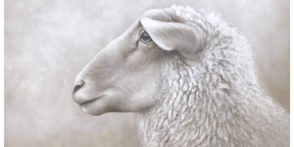 Pure laine - Atelier d'un jour