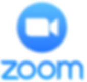 Zoom-Pro-Annually-2_edited.jpg