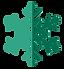 vert flocon de neige