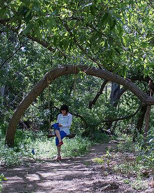 smi-ecoarts-sophia-swing-woods.jpeg
