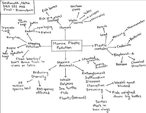 marine_brainstorm.png