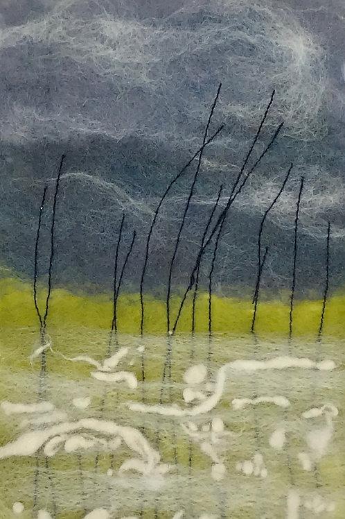 'grasslands'