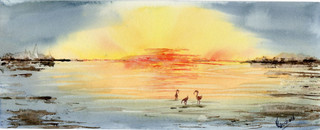 coucher de soleil sur les salins