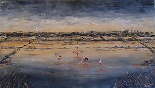 Les flaments roses des salins d'hyères
