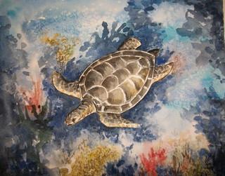 tortue de mer en migration