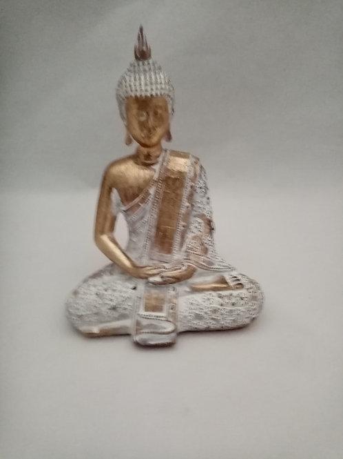 BUDA IN RESINA