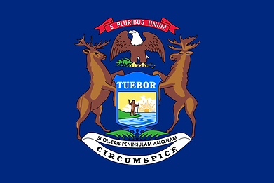 800px-Flag_of_Michigan.svg.png