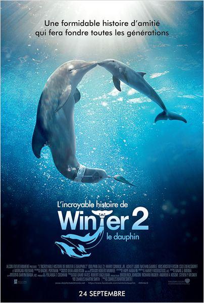 histoire de Winter le dauphin.jpg